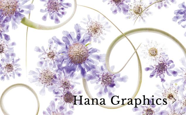 Hana Graphics